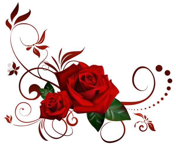 Histoire De La Rose