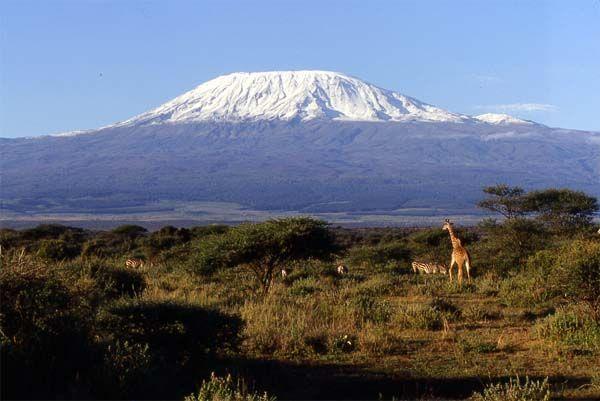 Pascal Danel - Les Neiges Du Kilimandjaro